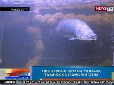 NTG: Libu-libong isdang tabang, tampok sa isang museum sa Pasig City