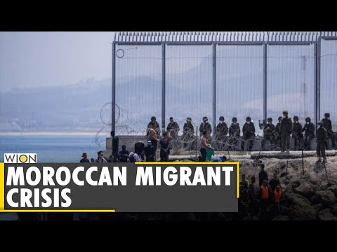 Why are Moroccans trying to enter Europe? | Latest World English News | WION News