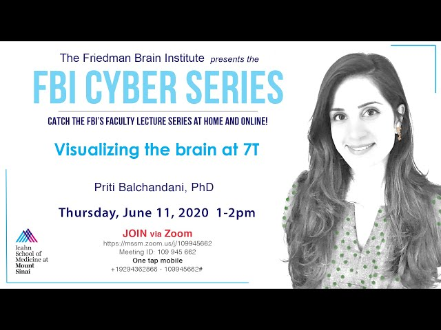 FBI Cyber Series - Visualizing the brain at 7T by Priti Balchandani, PhD