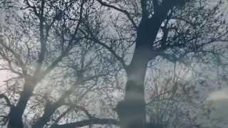 Lucian Ştefan - Ultimul sărut