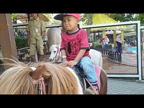 naik-kuda-poni-liburan-ke-jatim-park-2