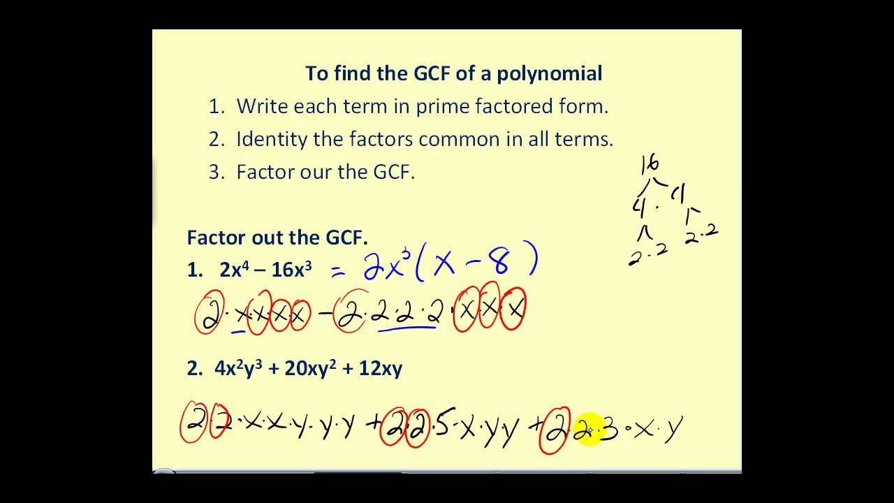 worksheet Factoring Gcf Polynomials Worksheet factoring out the greatest common factor youtube