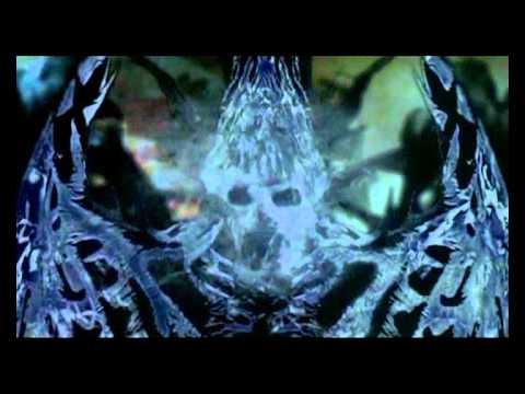 Дом ночных призраков на телеканале СТК 10
