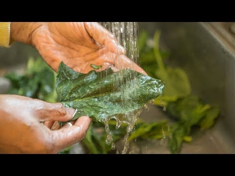 How To Wash And Cook Greens || COOKING WITH BERTA JAY