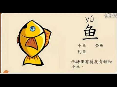 汉字部首-鱼(悟空识字)