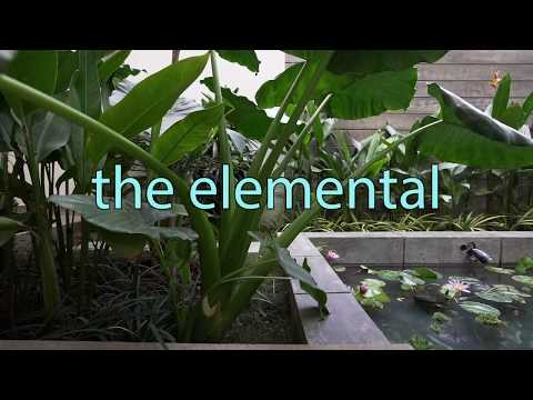 The Elemental House / Ashwin Architects Bangalore
