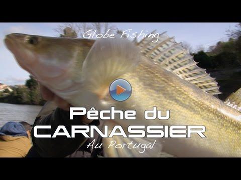 Pêche du carnassier au Portugal - Globe Fishing #4