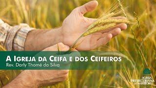 A Igreja da Ceifa e dos Ceifeiros | Rev. Darly Thomé da Silva