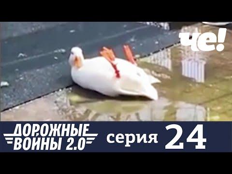 Дорожные войны   Сезон 8   Выпуск 24