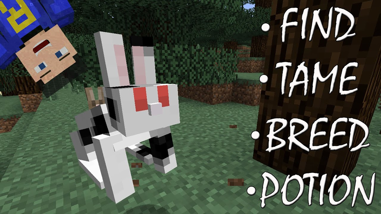 How to Breed Animals in Minecraft: 14 Steps (with Pictures)