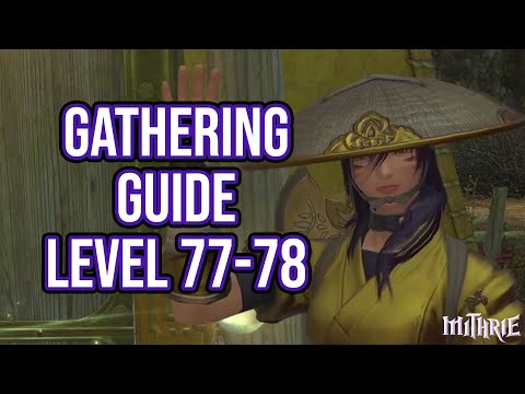 FFXIV 5.3 1507 Gathering Guide Level 77 to 78