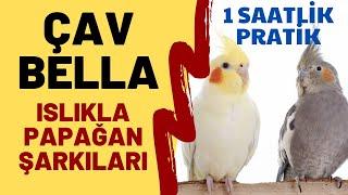 ISLIKLA ÇAV BELLA 1 SAAT - ISLIKLA PAPAĞAN ŞARKILARI - ISLIKLA BELLA CIAO