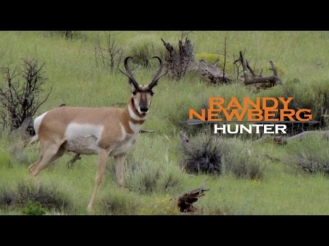 Hunting New Mexico antelope with Randy Newberg - archery (FT S4 E6)