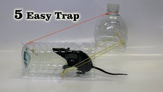 5 Easy Mouse/Rat Trap thumbnail