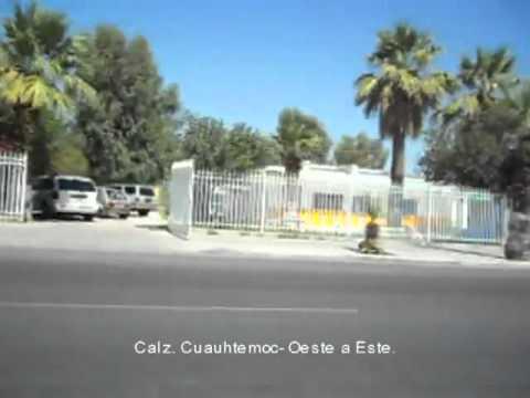 Perro tour por Mexicali