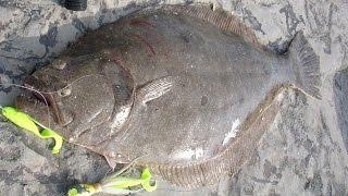 Inlet Flounder Fishing - 6-pound Fluke on the Rocks