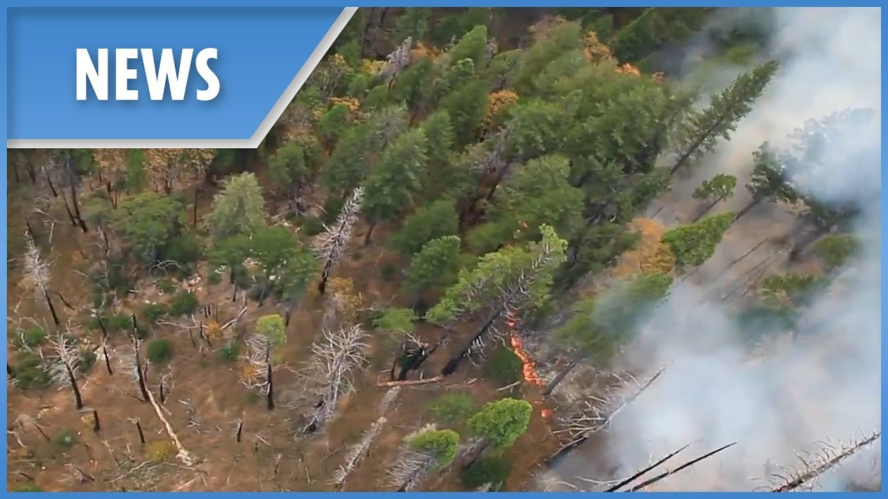 Aerial aftermath of deadly wildfire in Butte County