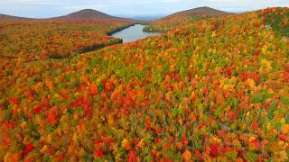 This is Fall Foliage in Groton Vermont - October 8th - Green Mountain Drone