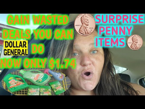 Gain Wasted Only $1.74 & Penny Items At Dollar General