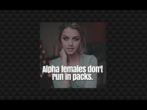 Jordan Peterson: Alpha females, alpha males, heroes & choosy mate selection