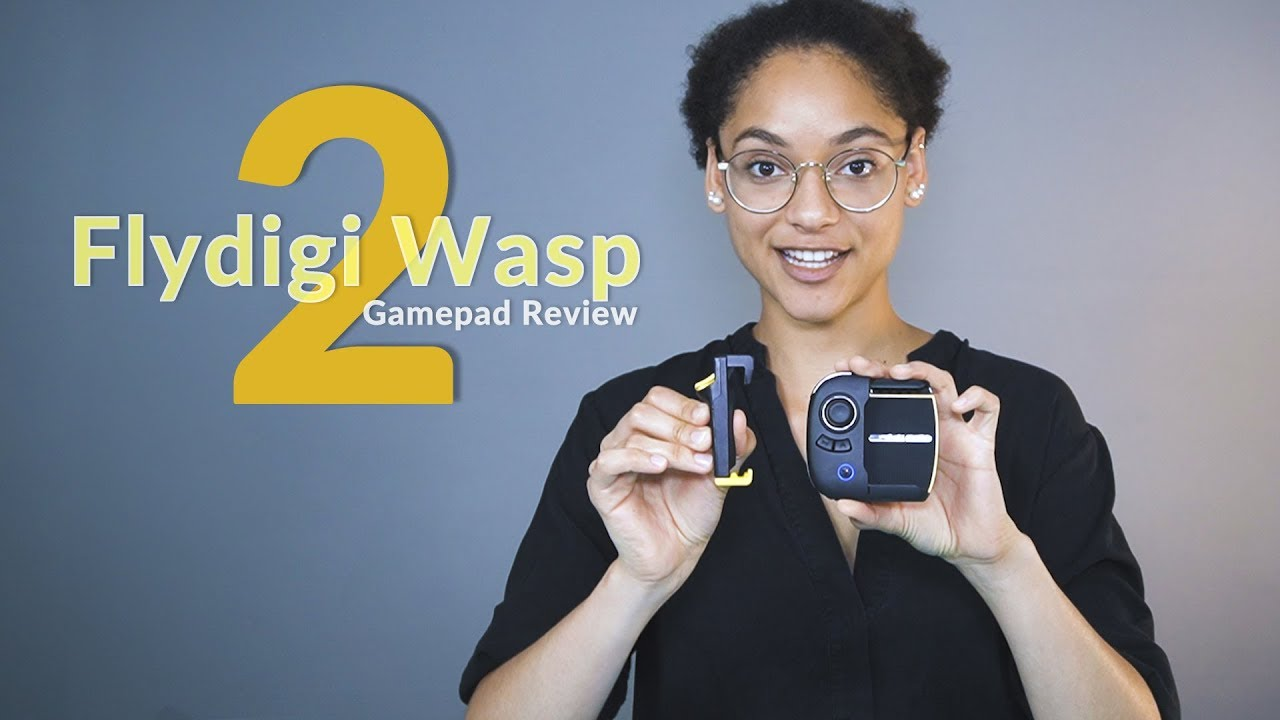Flydigi Wasp 2 Review: The Bes...