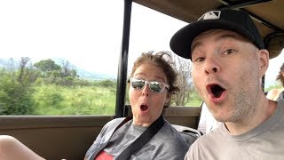 VLOG #14 -- South African safari & Cape Town adventure