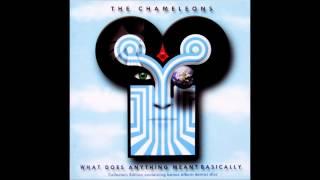 The Chameleons - P.S. Goodbye