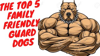 Top 5 most family friendly guard dogs - DogCast TV S01E06  Best guard dogs for family protection.