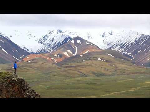 The Great Outdoors: Denali National Park, Alaska
