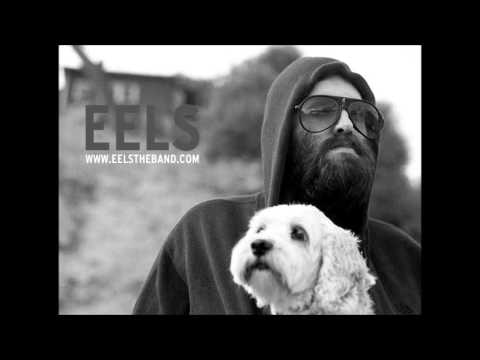 EELS - Little Bird