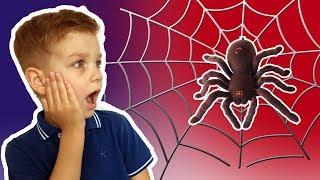 Большой паук пробрался в дом. Веселое видео для детей.