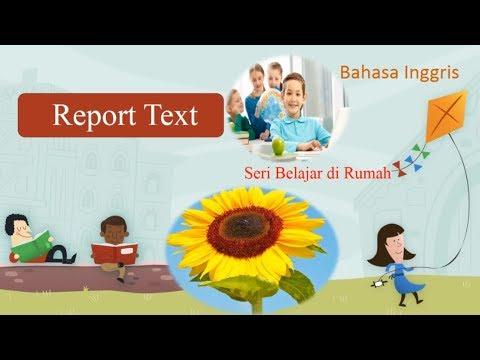 Report Text Bahasa Inggris Seri Belajar Di Rumah Let S Stop Coronavirus Youtube
