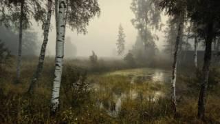 Download Сергей Трофимов - Не рассказывай (Всё не важно) Mp3 and Videos