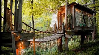 """Stay In A Tiny House In The Trees In Airbnb's #1 """"most Wished-for Listing Worldwide!"""""""