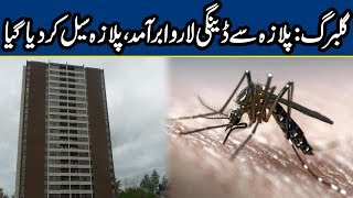 Another Dengue Larva Found From a Plaza in Gulberg | Breaking News | Lahore News HD