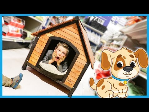 AXEL IS GETTING A PUPPY!