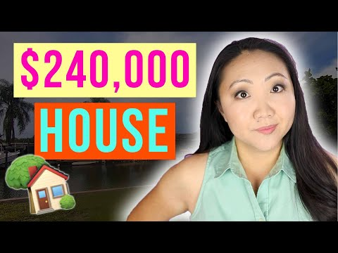 We Didn't Buy a $240,000 Waterfront House 🏡 Tampa House Hunting Vlog