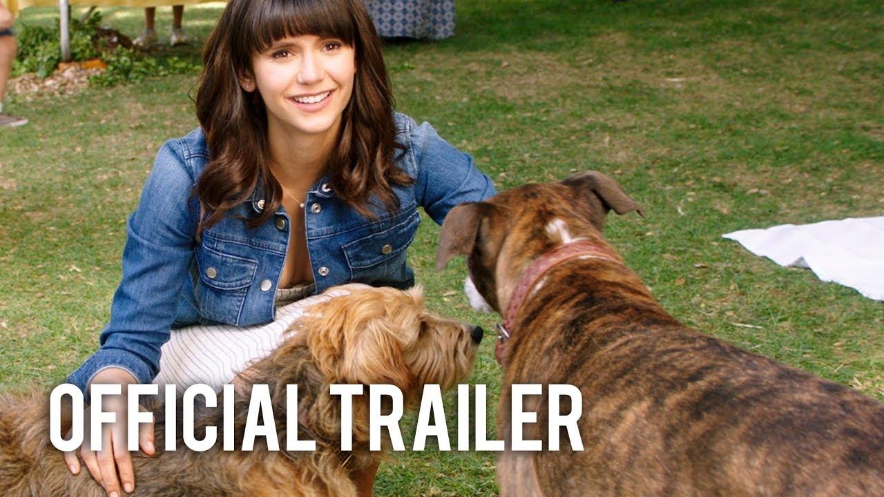 dog days full movie youtube