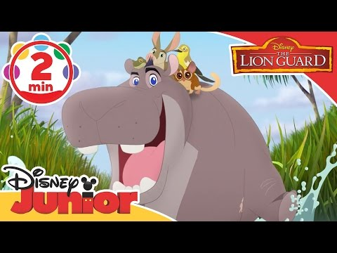 The Lion Guard | Makin' Hippo Lanes Song | Disney Junior UK