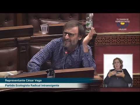Cesar vega contra la ortodoxia covid-   votación sobre el derecho de reunión  19/3/2021