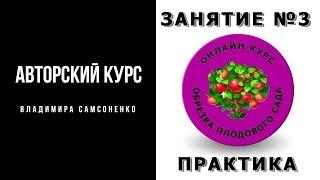 """Онлайн курс """"Обрезка плодового сада"""" практическое занятие Ролик"""