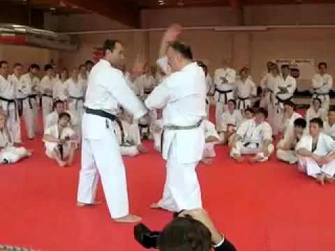 Makotokai Karate Do Gasshaku 2009 with Bolaffio Sensei