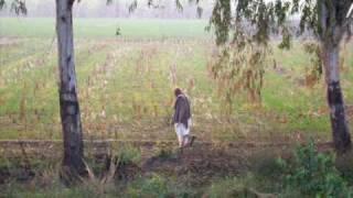 Basheera Choki Bhagat ماہی دے ڈیرے تے پیا بولے کاں