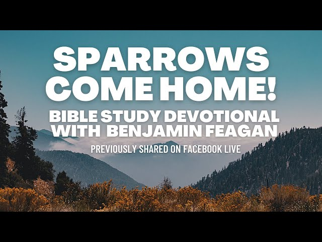 SPARROWS COME HOME! What do birds represent and where should birds flock to? II FB Live