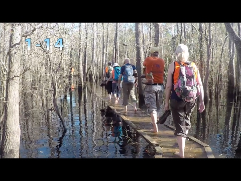 Florida Trail: First FTA Hike on CRS