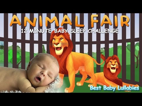 ♥ Animal Fair Lullaby  Lyrics To Put A Baby To Sleep Songs  Lyrics-Baby Lullaby Lullabies   ♥