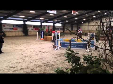 Coral Estate Ayo indoor eventing