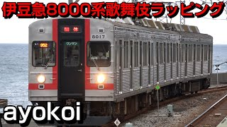 伊豆急8000系TA-7編成 歌舞伎ラッピング