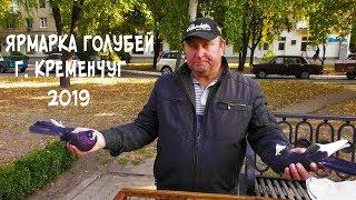 Ярмарка голубей г. Кременчуг 2019 / первая часть / 28.09.19