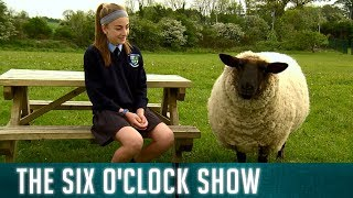 The kids at Ballinkillen NS chat naughty pets!   The Six O'Clock Show